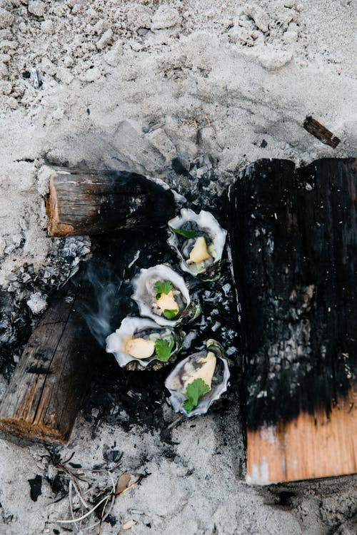 Top view of delectable shellfish cooked on bonfire with charcoal in sand on beach