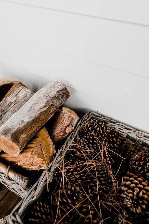 Firewood and pine cones at white wall