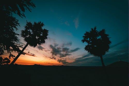Free stock photo of backlit, beautiful sky, dawn, dusk