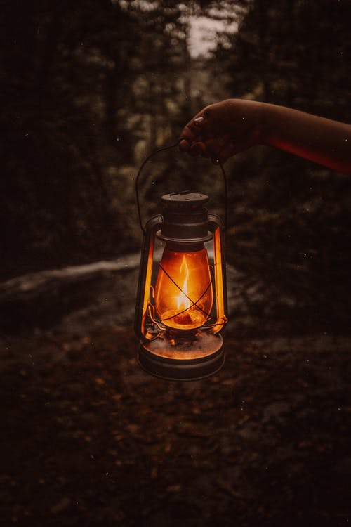 Old lantern in darkness in forest