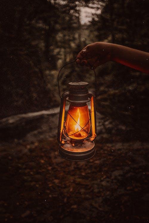Old lantern in darkness in forest