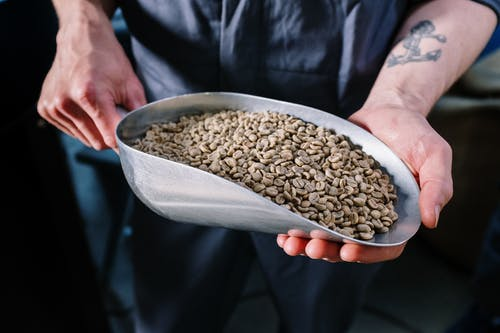Person Holding Brown Beans in White Ceramic Bowl