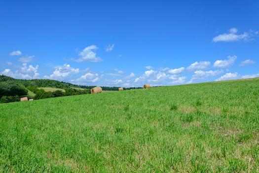 Kostenloses Stock Foto zu natur, himmel, wolken, wald