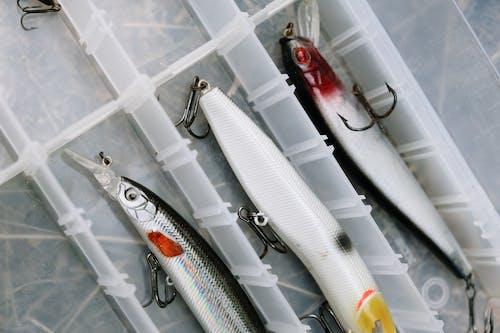 White and Black Fishing Rod