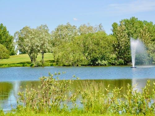 Foto profissional grátis de fonte, lago, lagoa, natureza