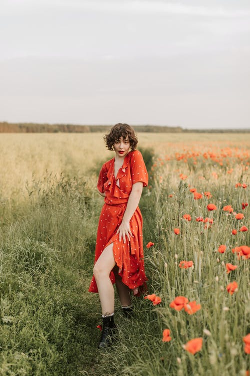 Kostnadsfri bild av 20-25 år gammal kvinna, blomma, fält, flicka