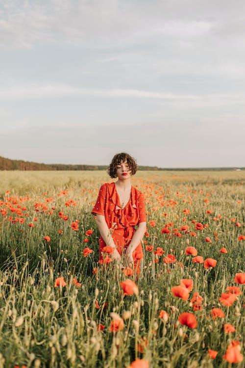Kostnadsfri bild av 20-25 år gammal kvinna, bete, blomma, fält