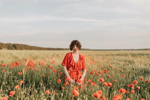 Kostnadsfri bild av 20-25 år gammal kvinna, åkermark, bete, blomma