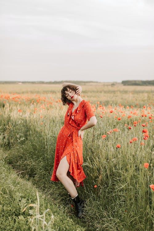 Kostnadsfri bild av 20-25 år gammal kvinna, blomma, blond, fält