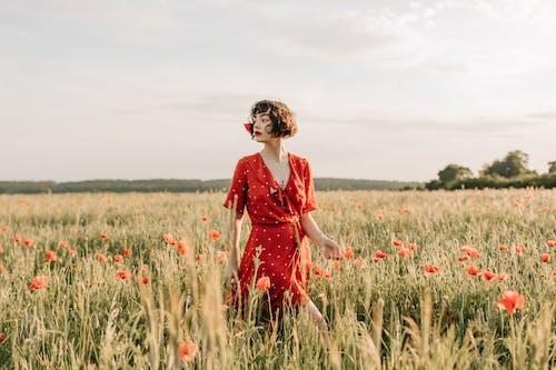 Kostnadsfri bild av 20-25 år gammal kvinna, åkermark, blomma, bondgård