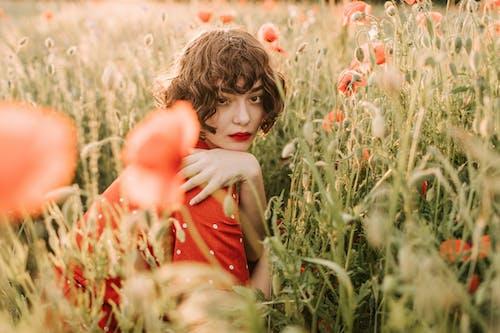 Kostnadsfri bild av 20-25 år gammal kvinna, blomma, blond, falla