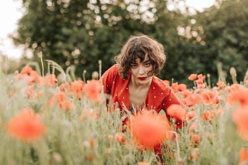 Kostnadsfri bild av 20-25 år gammal kvinna, blad, blomma, fält