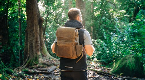 Man in Grey Shirt and Brown Backpack Standing in Forest