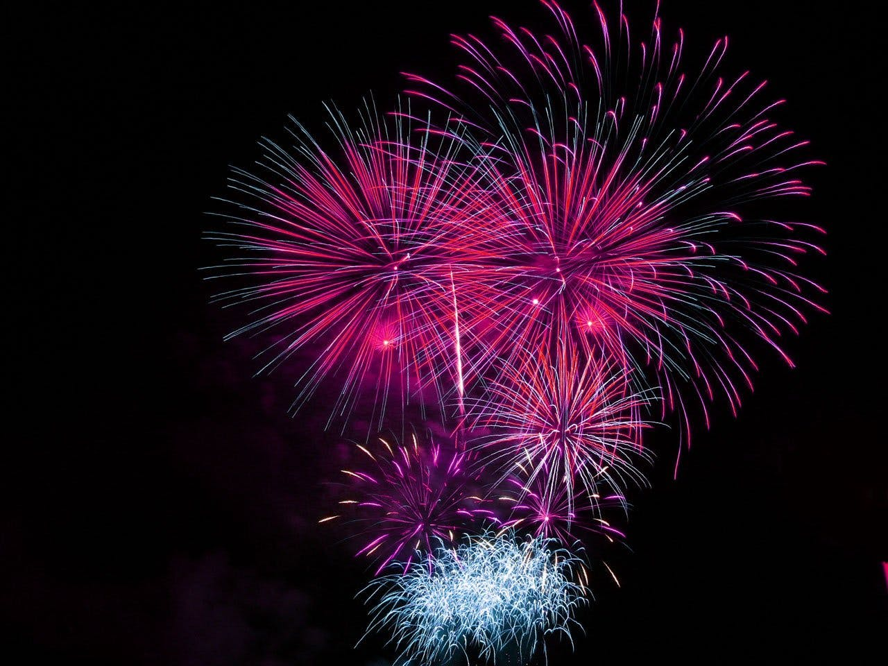 Pink and Blue Fireworks Display during Night Time