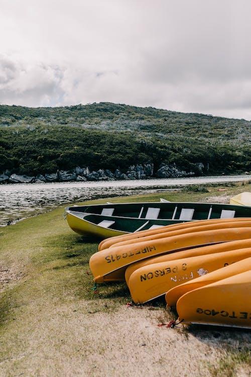Foto profissional grátis de à beira-mar, água, ao ar livre