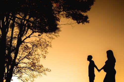 คลังภาพถ่ายฟรี ของ amor, amor de casal, árvore, caminhada