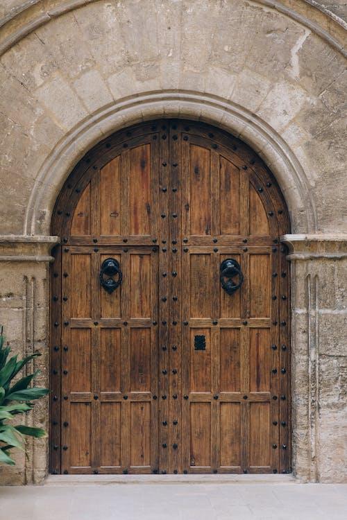 Brown Wooden Door With Green Plant