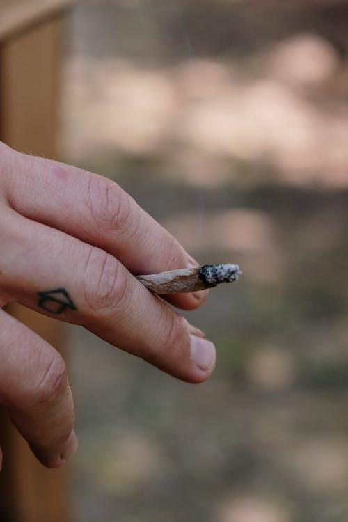 Darmowe zdjęcie z galerii z chwast, dym, dymiący