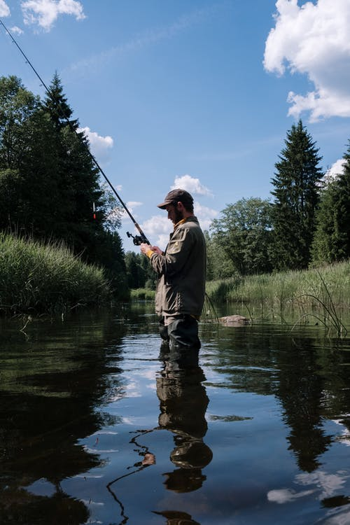 Fotos de stock gratuitas de afición, al aire libre, aparejo de pescar