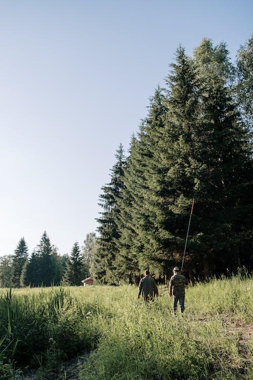 People Walking on Green Grass Field Near Green Trees