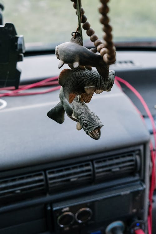 Grey Elephant Figurine on Car