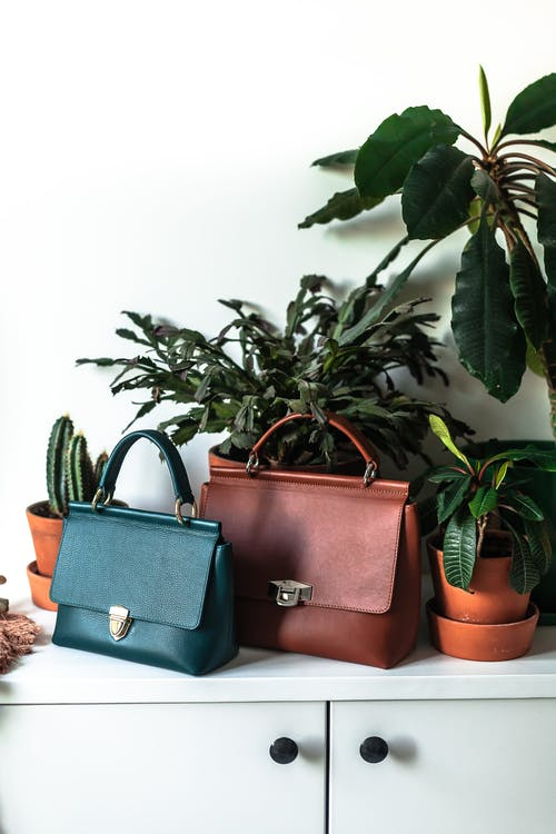 Fashionable leather purses placed on cabinet near potted plants