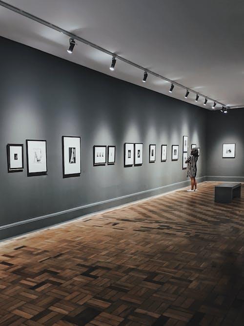 Fotos de stock gratuitas de adentro, arquitectura, contemporáneo, dentro