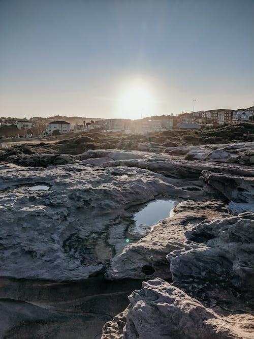 Gratis lagerfoto af bondi beach, flot natur, kyst, kyst og oceaniske landformer