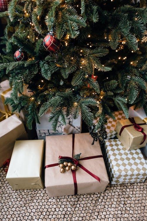 Kerst Geschenkdozen Onder Dennenboom