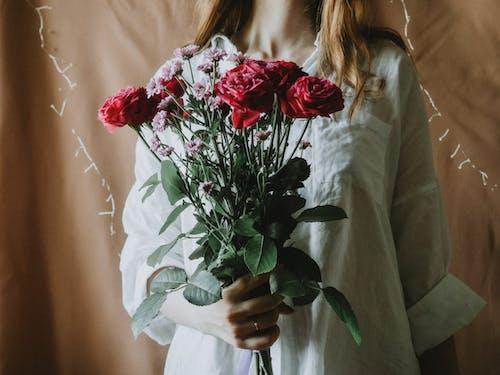 Imagine de stoc gratuită din afișare, aranjament floral, arc