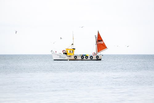 Traditional fishing boat with raised sails floating on rippling sea water against cloudy sky with flying birds