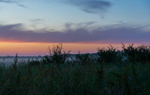 Gratis lagerfoto af aften, atmosfærisk aften, bane, belarus