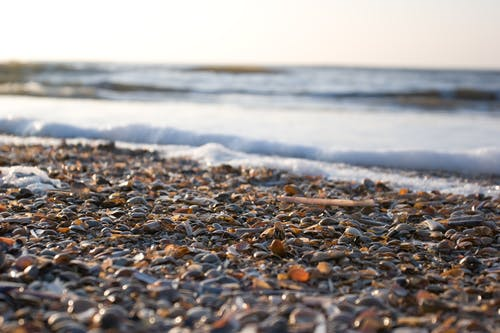 Close-Up Shot of Pebbles on the Beach