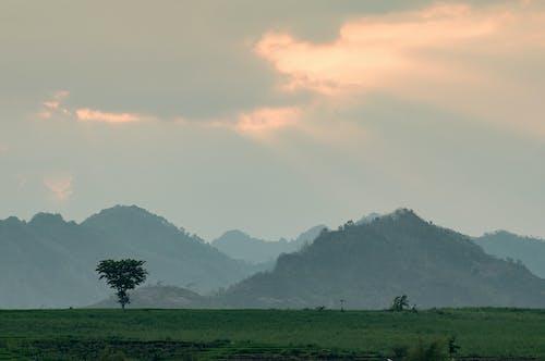 光, 光線, 山の無料の写真素材
