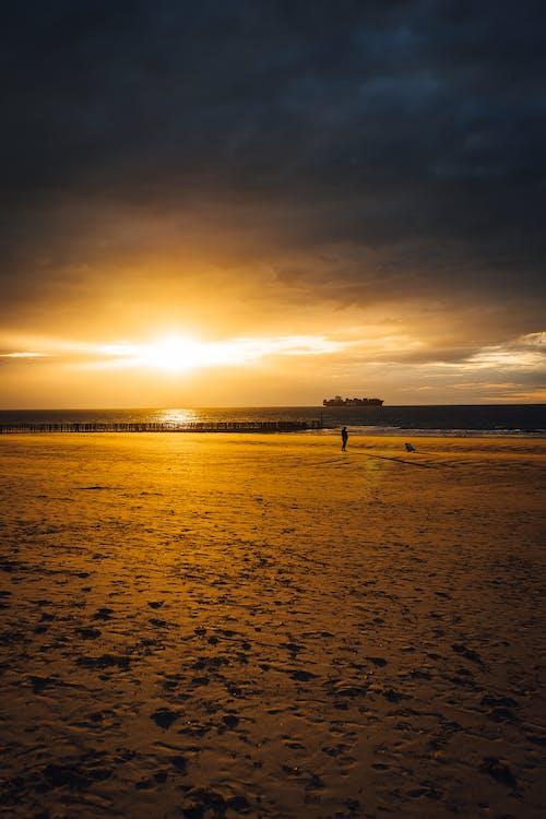 Gratis lagerfoto af betaler-bas, cadzand, europa, gylden solnedgang