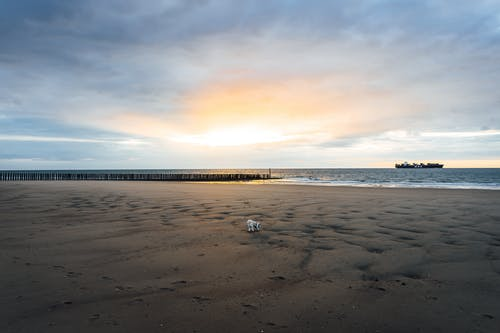 Free stock photo of beach sunset, boat, cadzand, cloud