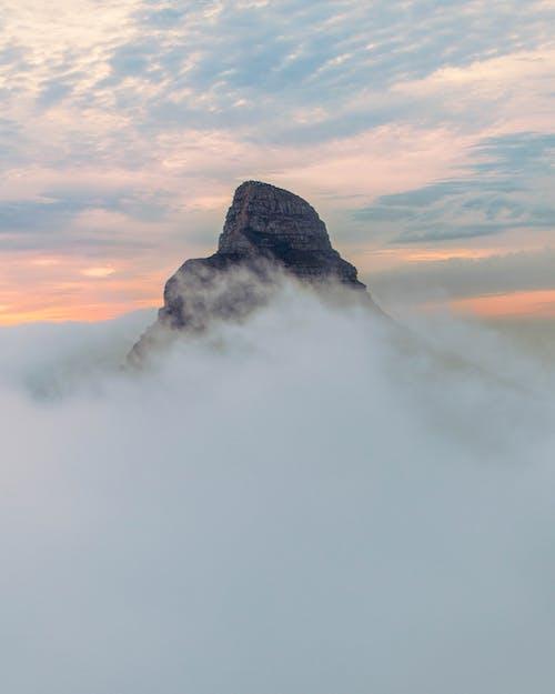 Imagine de stoc gratuită din cețos, fotografiere verticală, în ceață