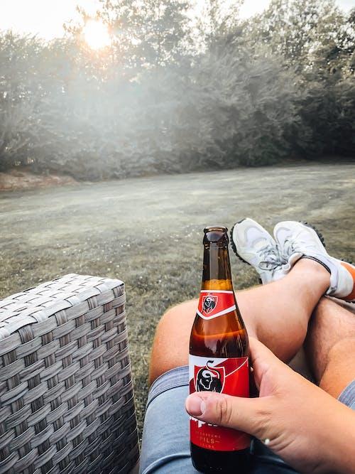 Kostenloses Stock Foto zu bier, cadzand, chillen, ferien