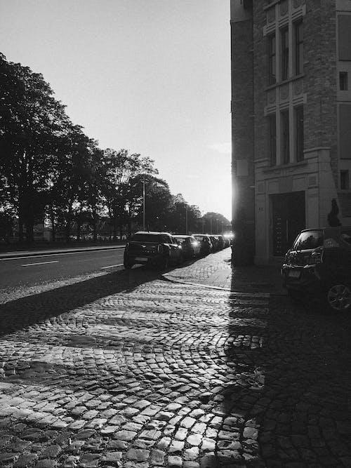 Gratis lagerfoto af arkitektonisk, arkitektur, Belgien, bnw
