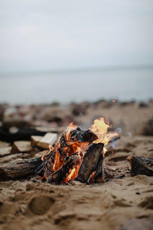 Burning Wood on Gray Sand Near Sea