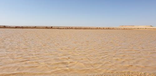 Darmowe zdjęcie z galerii z احمد ادريس, احمد الصنقري, الصحراء