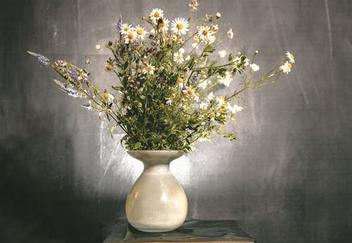 White and Yellow Flowers in White Ceramic Vase