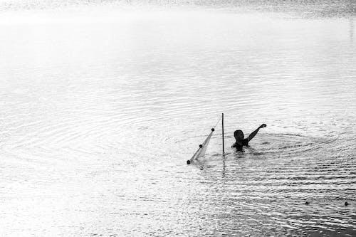 Gratis lagerfoto af abstrakt baggrund, baggrundslys, fiskeri, gylden solnedgang