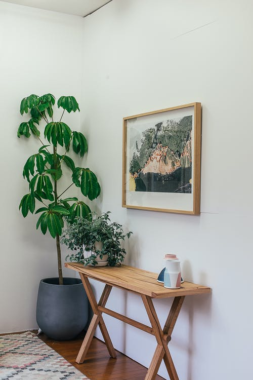 Interior details of stylish apartment with potted plants and framed picture