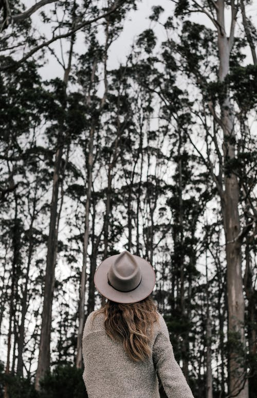 Foto profissional grátis de alto, anônimo, ao ar livre, árvore