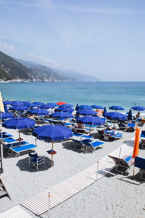 Sandy beach with sunbeds and umbrellas near calm blue ocean placed in resort hotel in sunny day
