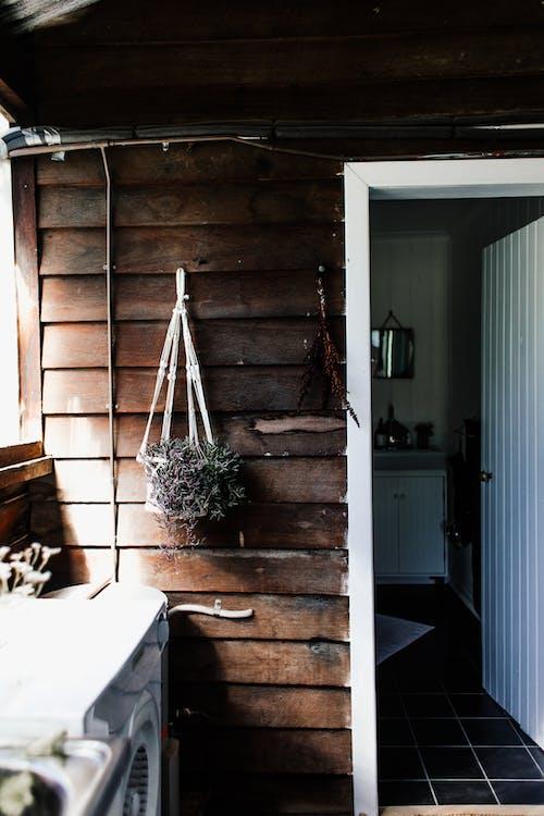 Бесплатное стоковое фото с вертикальный, выращивать, горшечных, дверь