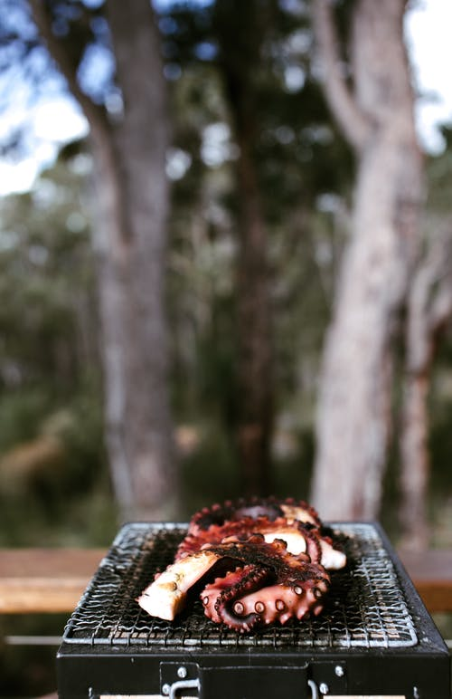 Cut tentacles of octopus cooked on grill against blurred trees in daytime in summer