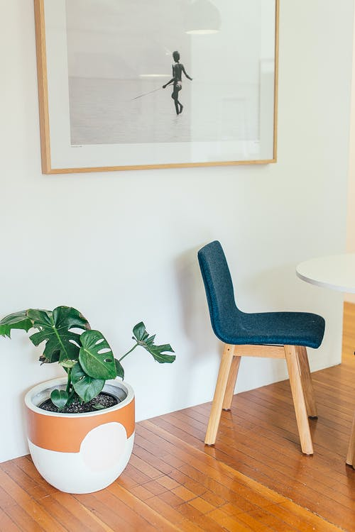Gratis stockfoto met afbeelding, appartement, artwork