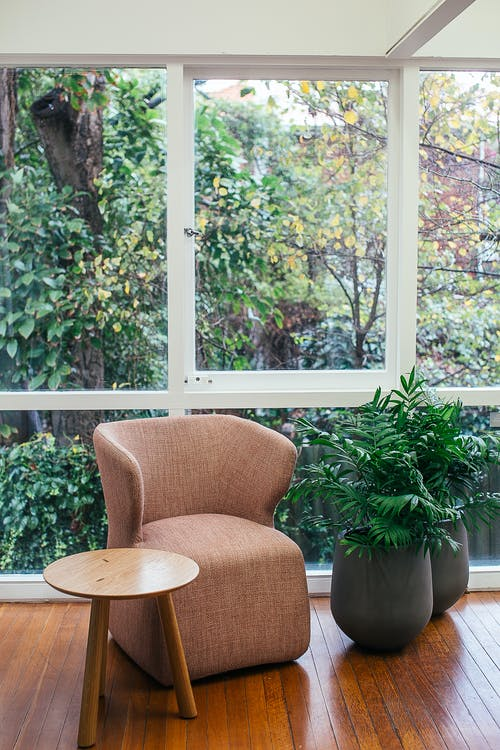 Potted plants in room near window and armchair